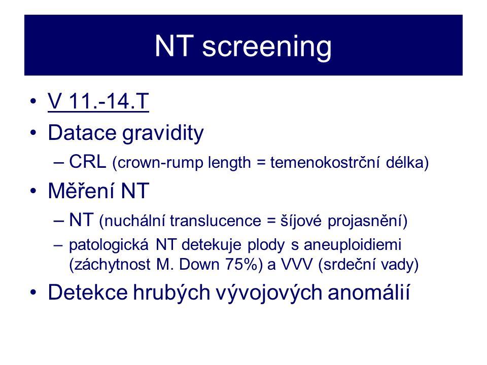 NT screening V 11.-14.T Datace gravidity Měření NT