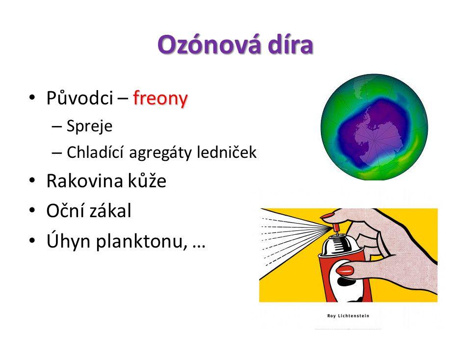 Ozónová díra Původci – freony Rakovina kůže Oční zákal