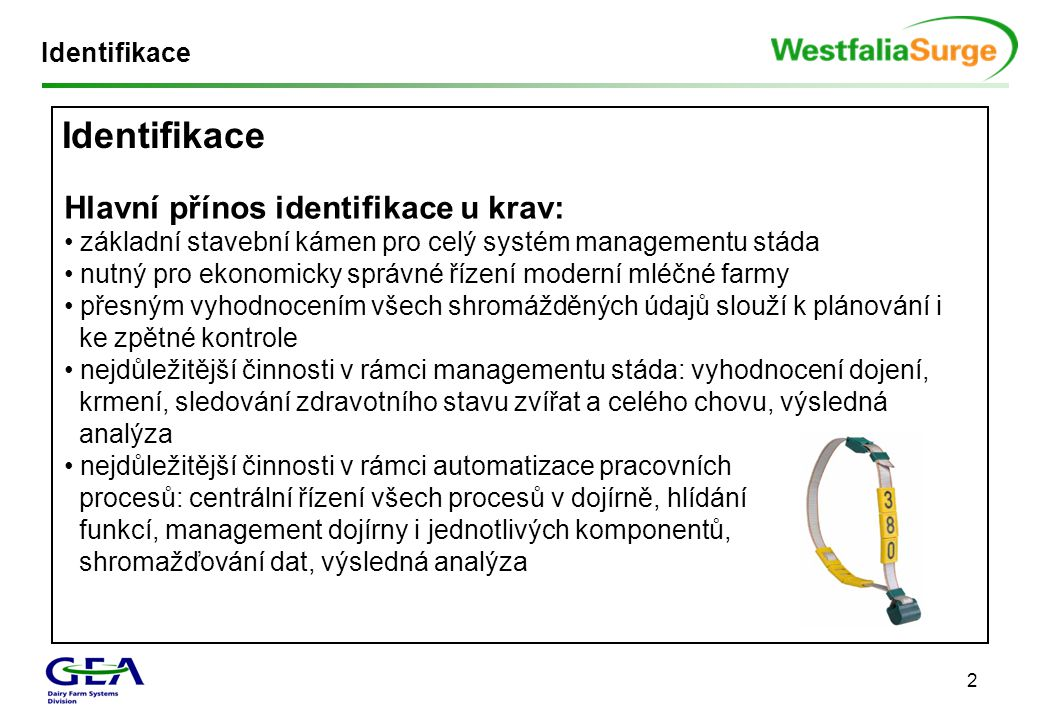 Identifikace Hlavní přínos identifikace u krav: Identifikace