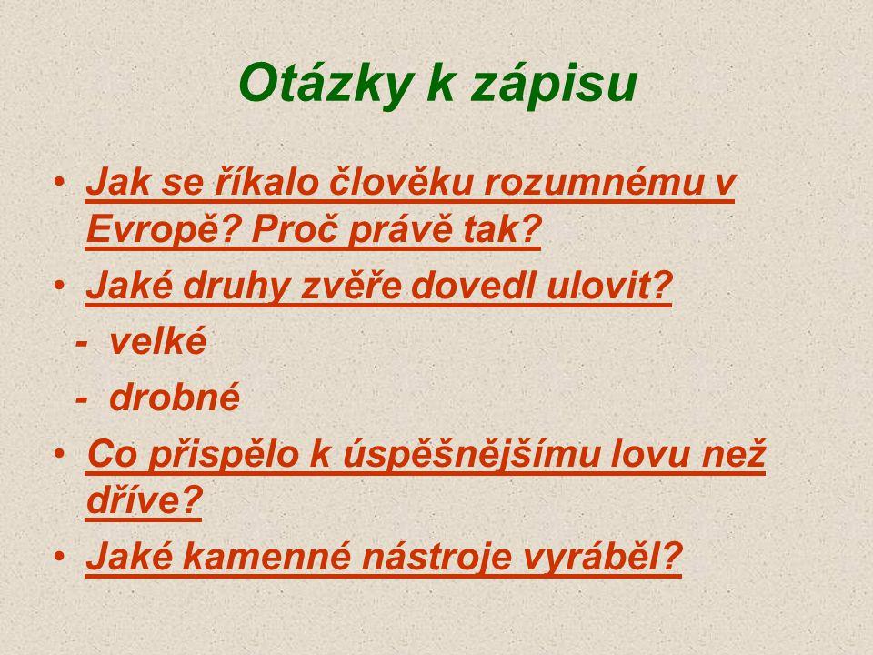 Otázky k zápisu Jak se říkalo člověku rozumnému v Evropě Proč právě tak Jaké druhy zvěře dovedl ulovit