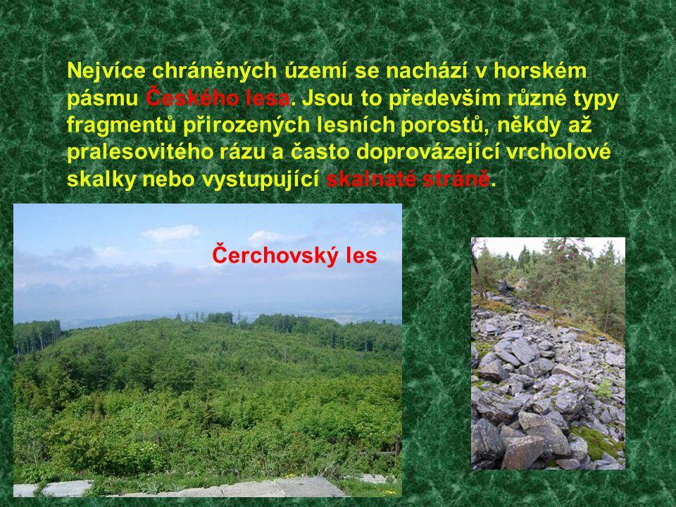 Nejvíce chráněných území se nachází v horském