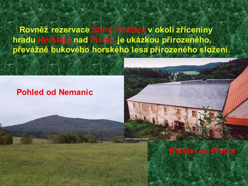 Rovněž rezervace Starý Hirštejn v okolí zříceniny