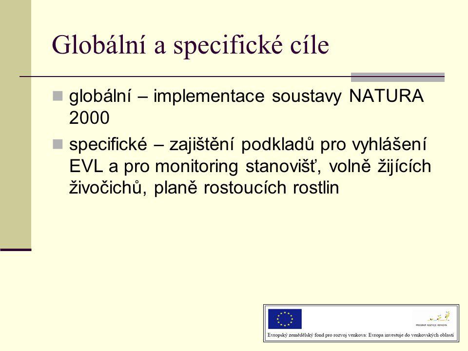 Globální a specifické cíle