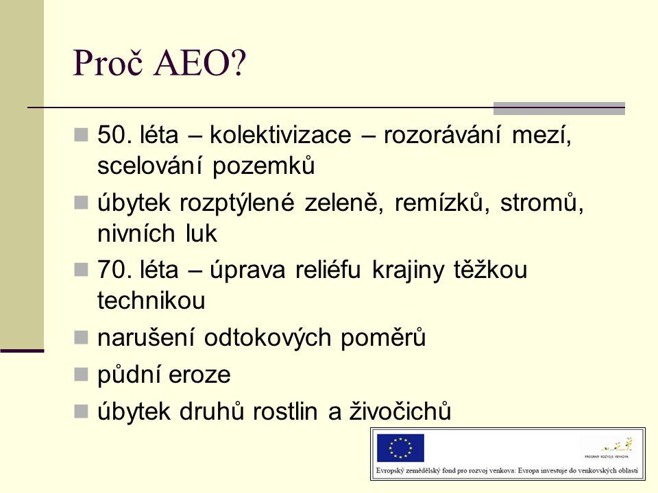 Proč AEO 50. léta – kolektivizace – rozorávání mezí, scelování pozemků. úbytek rozptýlené zeleně, remízků, stromů, nivních luk.