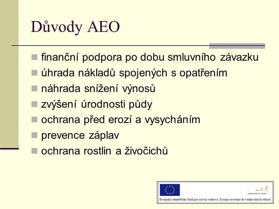 Důvody AEO finanční podpora po dobu smluvního závazku