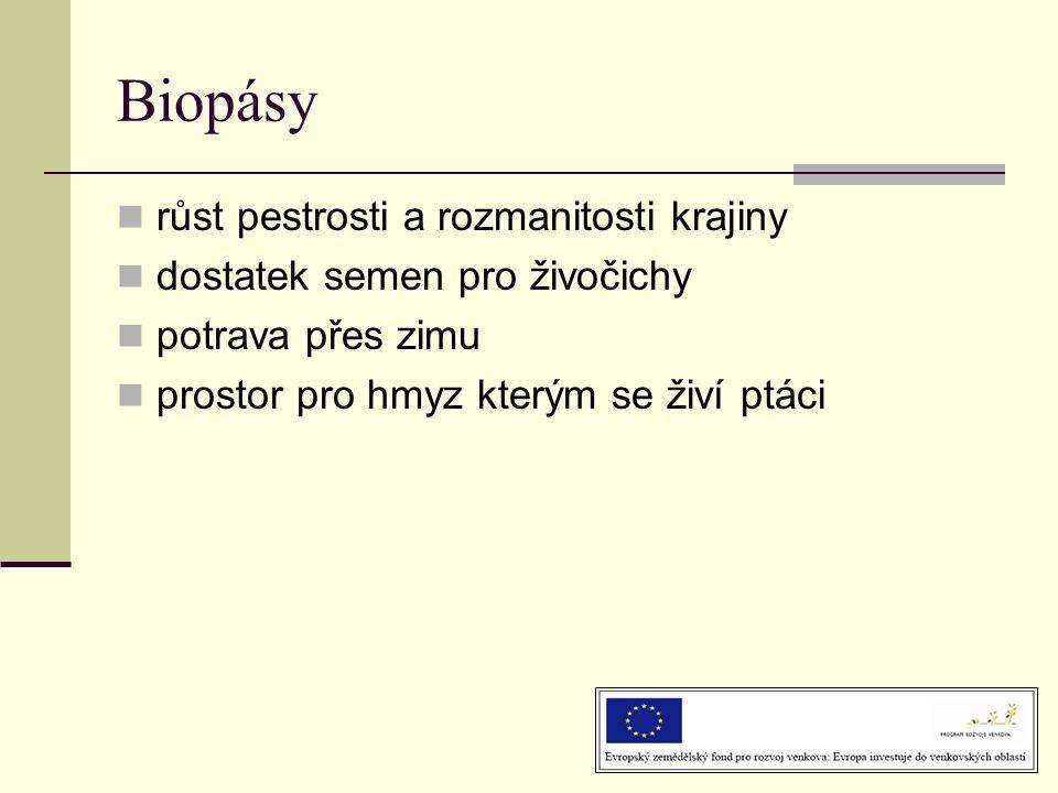 Biopásy růst pestrosti a rozmanitosti krajiny