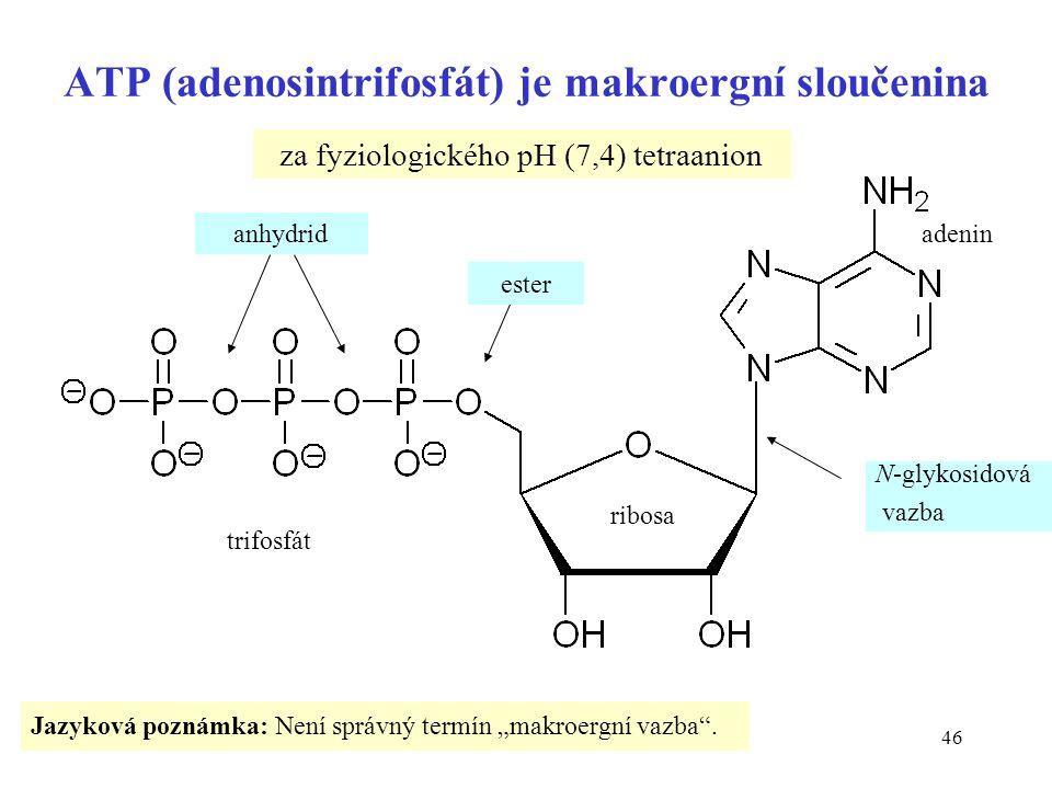 ATP (adenosintrifosfát) je makroergní sloučenina