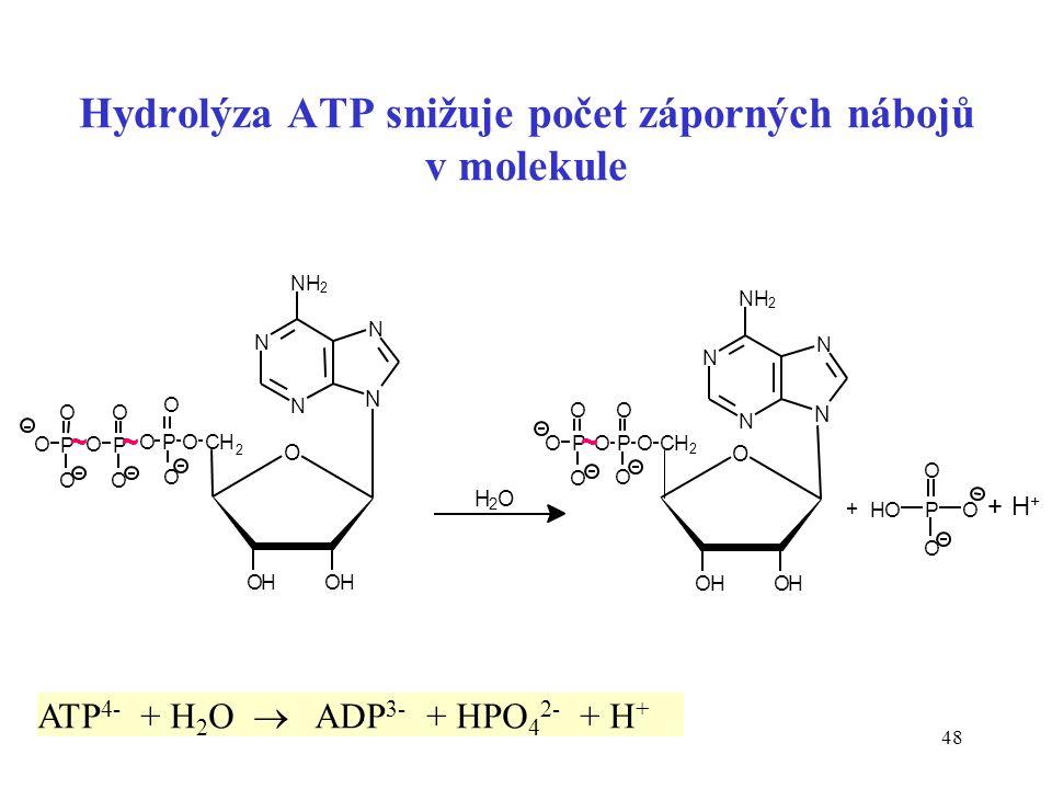 Hydrolýza ATP snižuje počet záporných nábojů v molekule