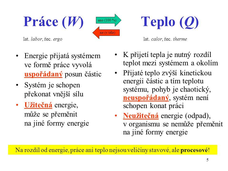 Práce (W) Teplo (Q) lat. labor, řec. ergo lat. calor, řec. therme