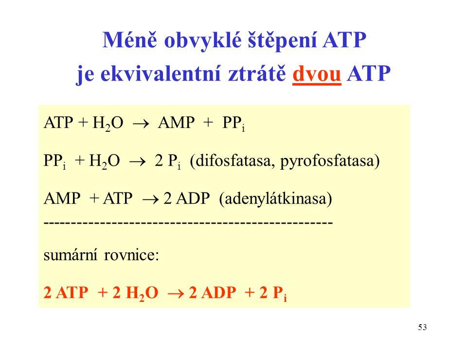 Méně obvyklé štěpení ATP je ekvivalentní ztrátě dvou ATP