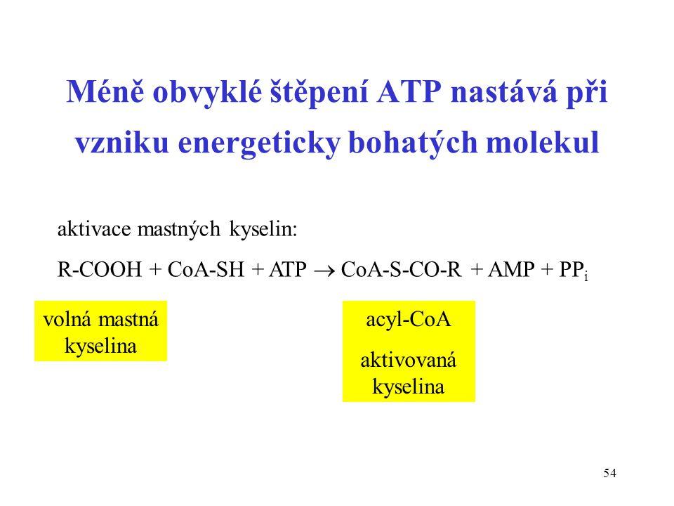 Méně obvyklé štěpení ATP nastává při vzniku energeticky bohatých molekul