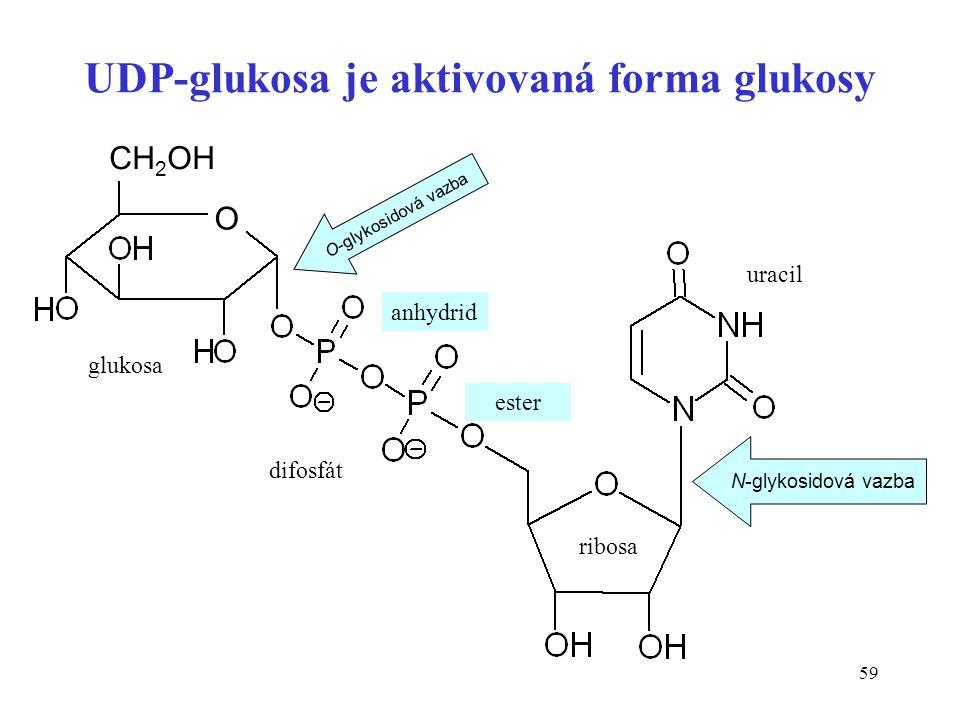UDP-glukosa je aktivovaná forma glukosy