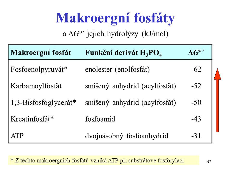 Makroergní fosfáty a ΔG´ jejich hydrolýzy (kJ/mol)