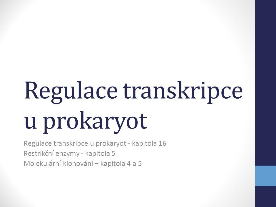 Regulace transkripce u prokaryot