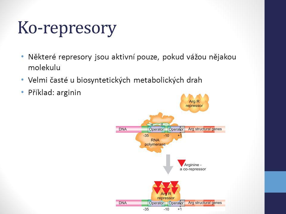 Ko-represory Některé represory jsou aktivní pouze, pokud vážou nějakou molekulu. Velmi časté u biosyntetických metabolických drah.