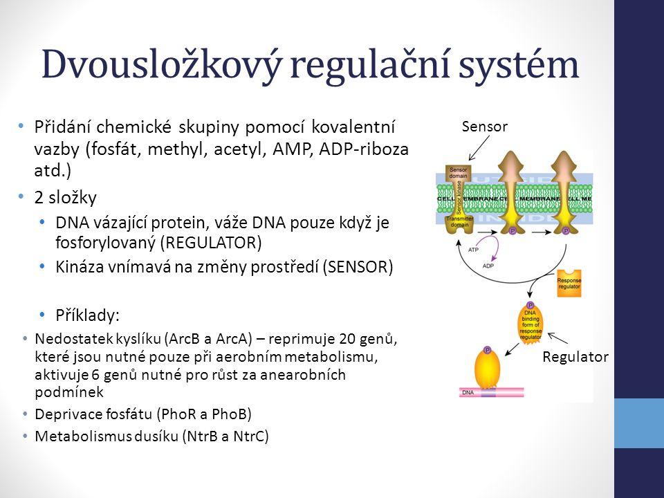 Dvousložkový regulační systém