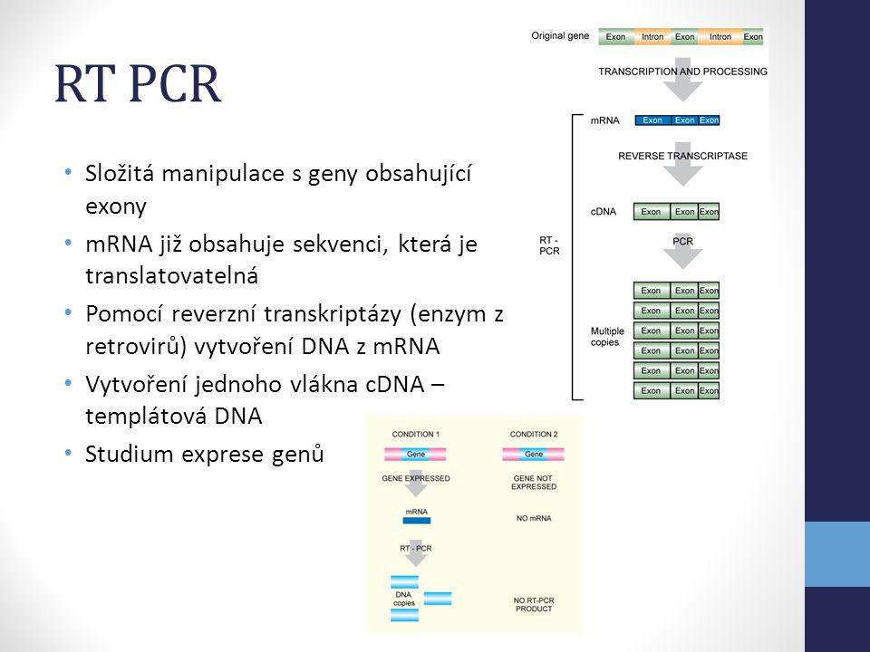 RT PCR Složitá manipulace s geny obsahující exony