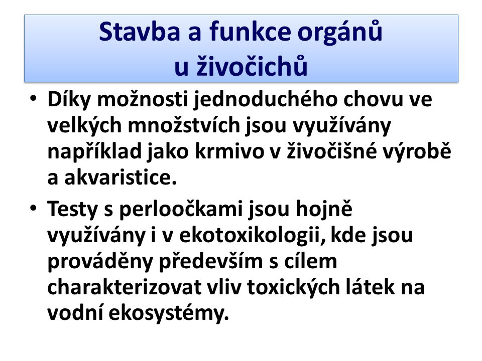 Stavba a funkce orgánů u živočichů
