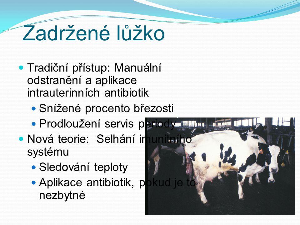 Zadržené lůžko Tradiční přístup: Manuální odstranění a aplikace intrauterinních antibiotik. Snížené procento březosti.