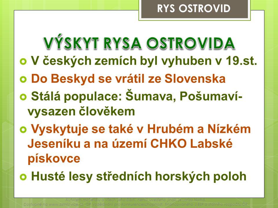 VÝSKYT RYSA OSTROVIDA V českých zemích byl vyhuben v 19.st.