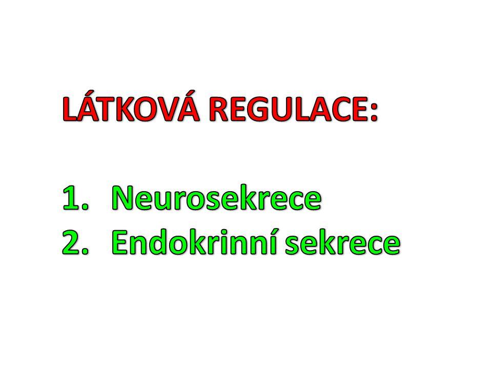 LÁTKOVÁ REGULACE: Neurosekrece Endokrinní sekrece