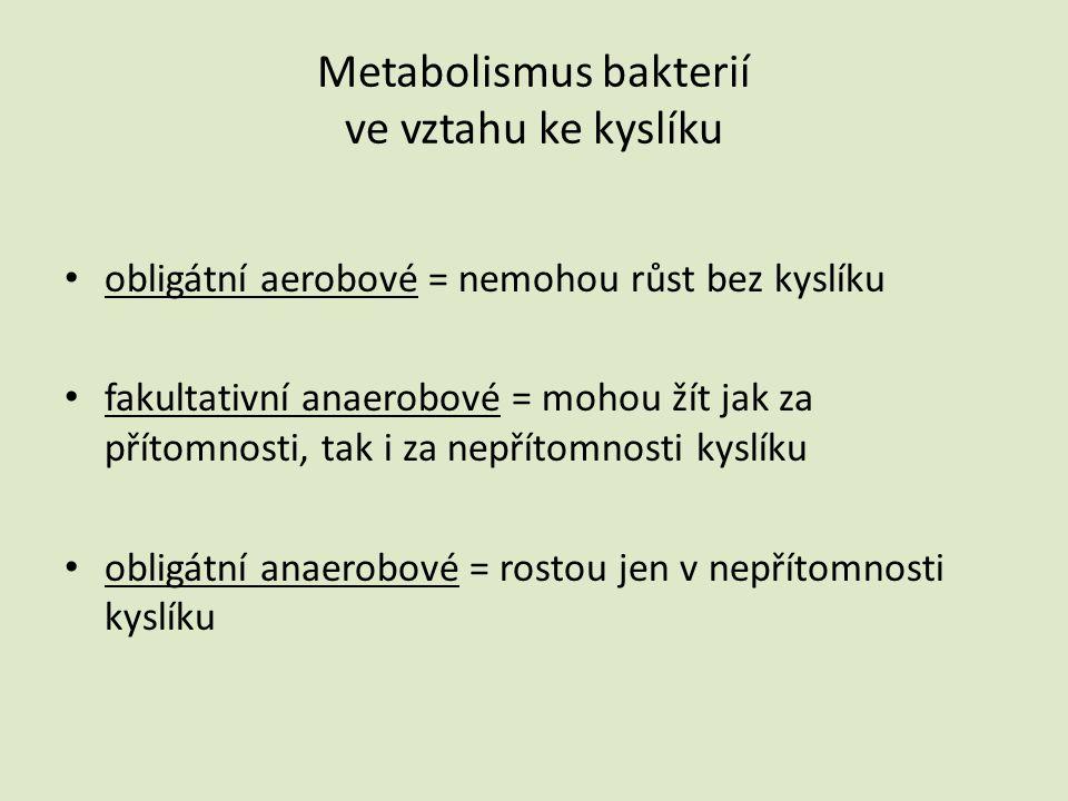 Metabolismus bakterií ve vztahu ke kyslíku