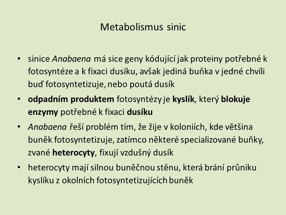 Metabolismus sinic