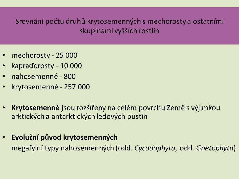 Srovnání počtu druhů krytosemenných s mechorosty a ostatními skupinami vyšších rostlin