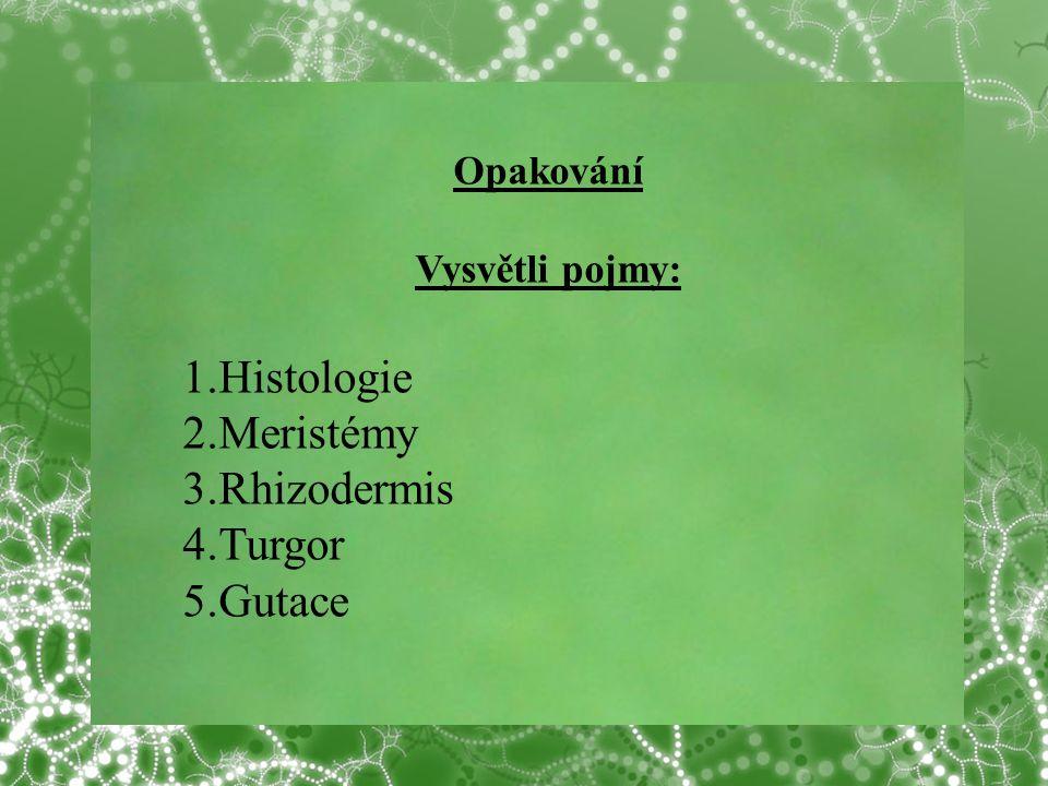 1.Histologie 2.Meristémy 3.Rhizodermis 4.Turgor 5.Gutace Opakování