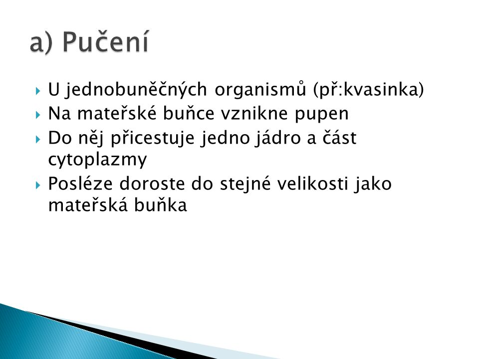 a) Pučení U jednobuněčných organismů (př:kvasinka)