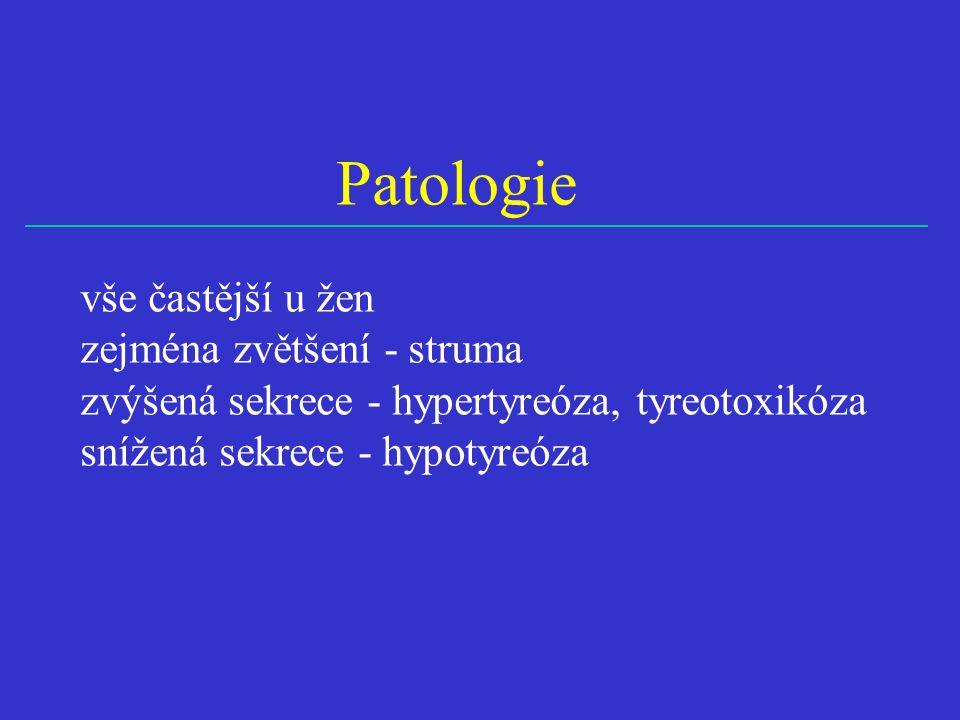 Patologie vše častější u žen zejména zvětšení - struma
