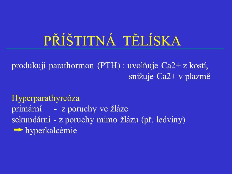 PŘÍŠTITNÁ TĚLÍSKA produkují parathormon (PTH) : uvolňuje Ca2+ z kostí,