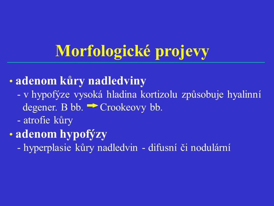Morfologické projevy • adenom kůry nadledviny