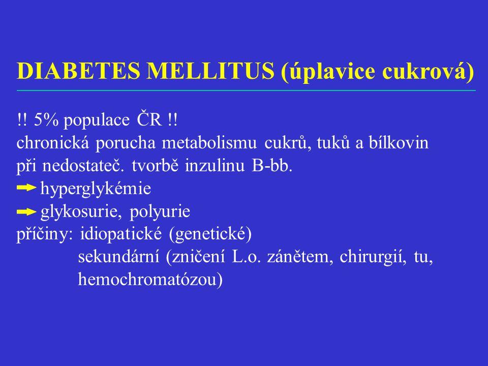 DIABETES MELLITUS (úplavice cukrová)