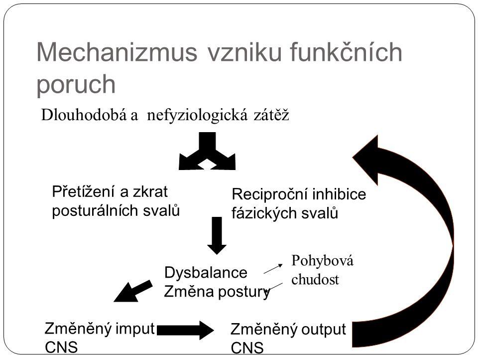 Mechanizmus vzniku funkčních poruch
