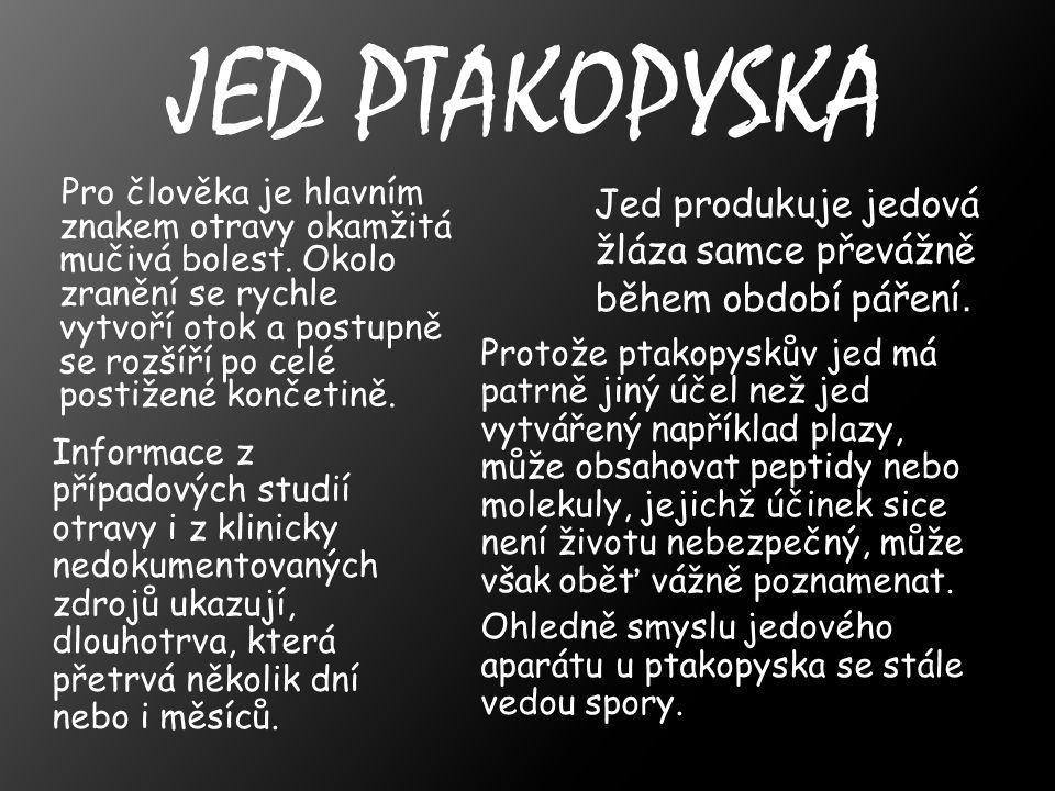 JED PTAKOPYSKA