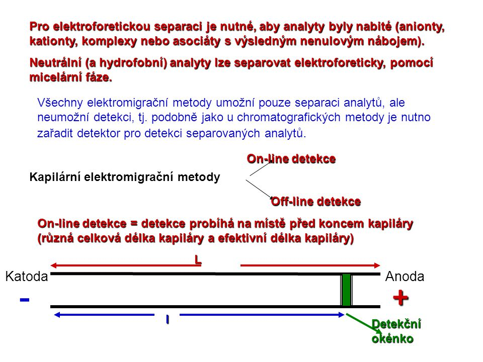 Pro elektroforetickou separaci je nutné, aby analyty byly nabité (anionty, kationty, komplexy nebo asociáty s výsledným nenulovým nábojem).