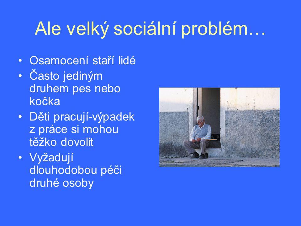 Ale velký sociální problém…