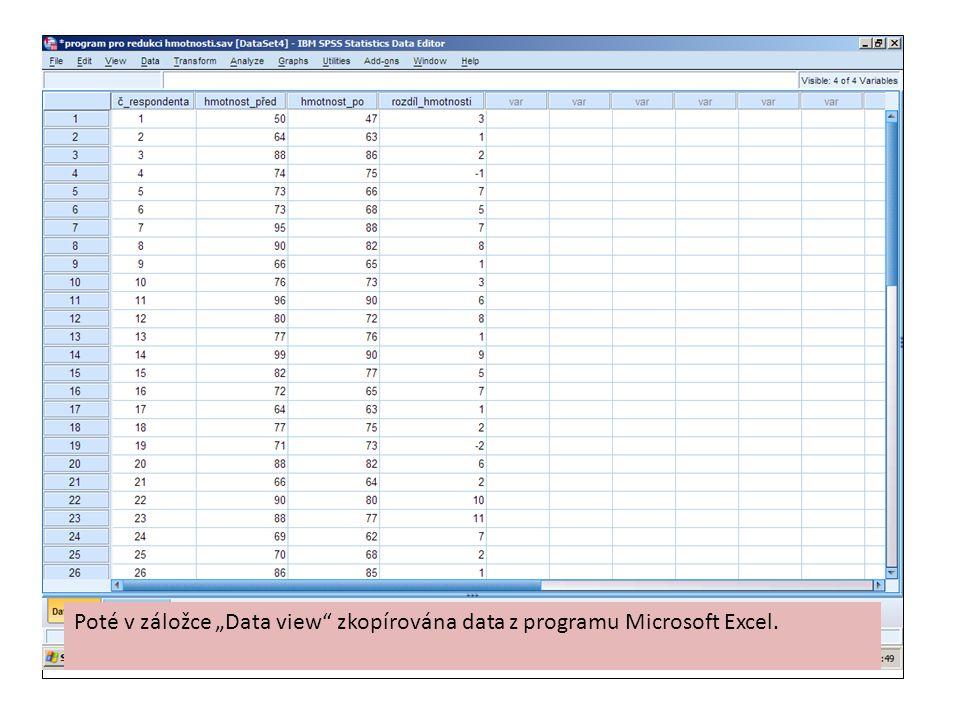"""Poté v záložce """"Data view zkopírována data z programu Microsoft Excel."""