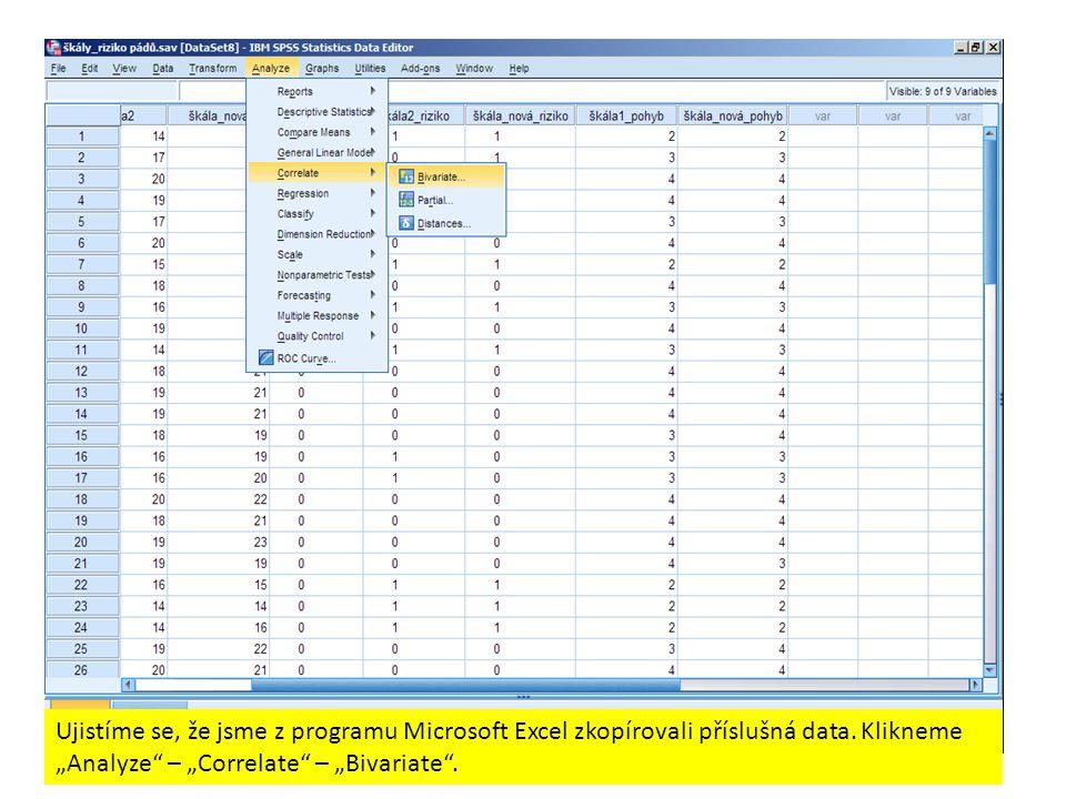 Ujistíme se, že jsme z programu Microsoft Excel zkopírovali příslušná data.