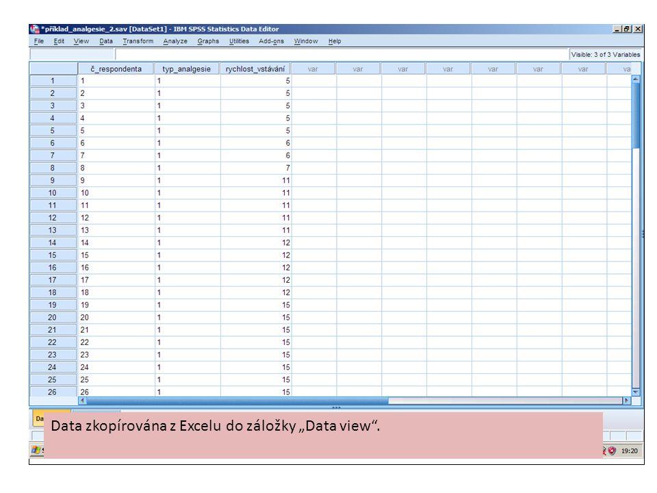 """Data zkopírována z Excelu do záložky """"Data view ."""