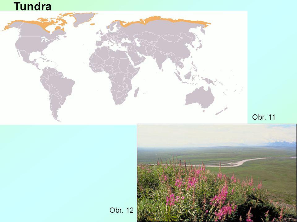 Tundra Obr. 11 Obr. 12