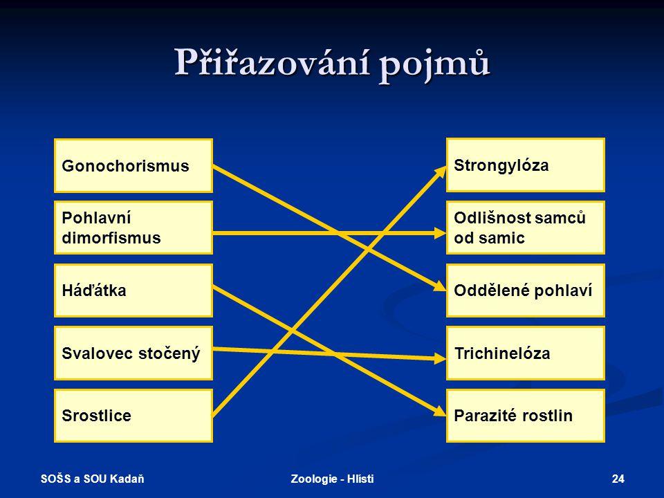 Přiřazování pojmů Gonochorismus Strongylóza Pohlavní dimorfismus