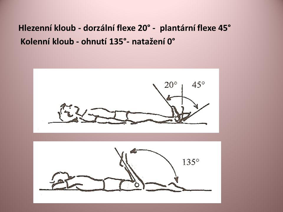 Hlezenní kloub - dorzální flexe 20° - plantární flexe 45°