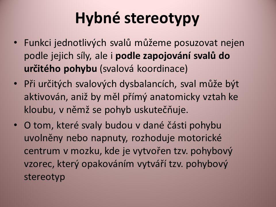 Hybné stereotypy