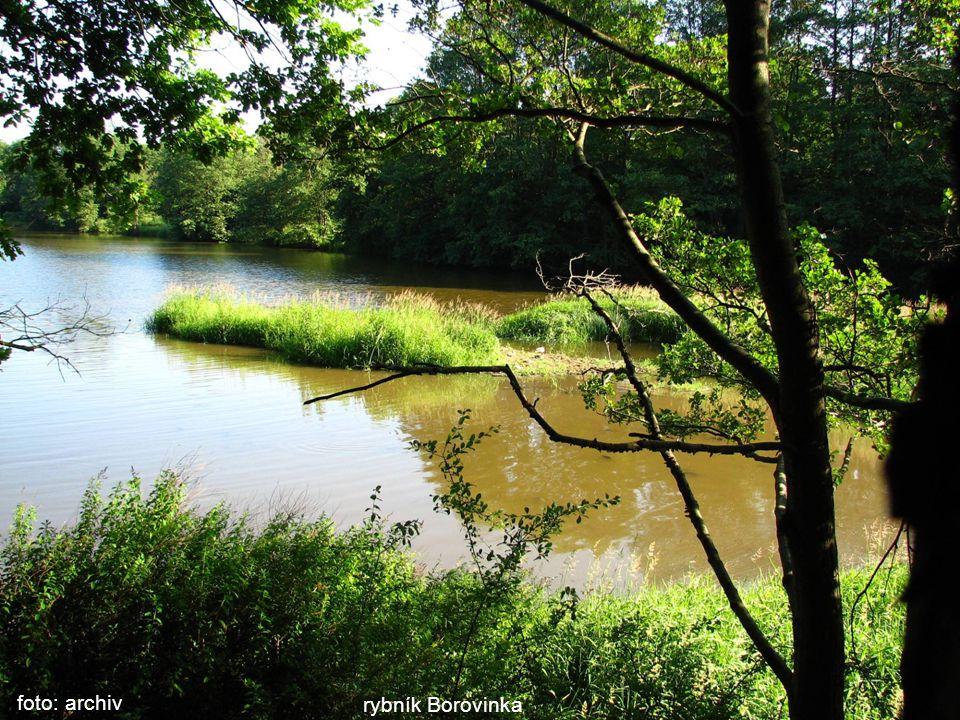 foto: archiv rybník Borovinka