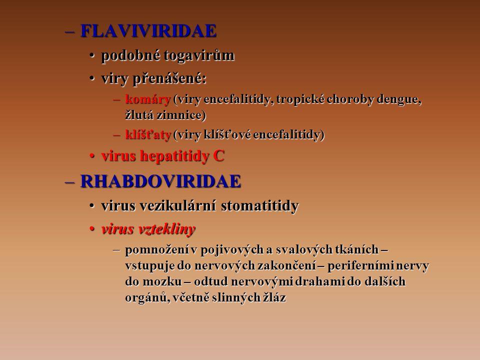FLAVIVIRIDAE RHABDOVIRIDAE podobné togavirům viry přenášené: