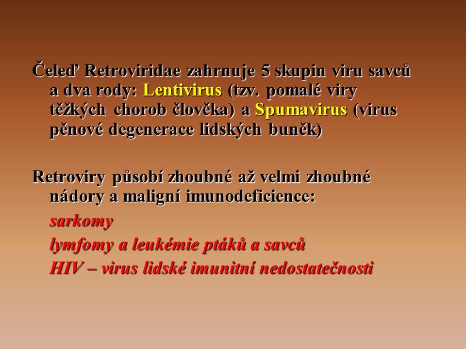 Čeleď Retroviridae zahrnuje 5 skupin viru savců a dva rody: Lentivirus (tzv. pomalé viry těžkých chorob člověka) a Spumavirus (virus pěnové degenerace lidských buněk)
