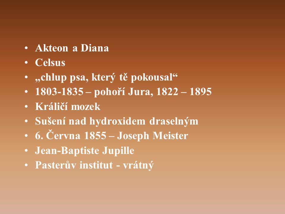 """Akteon a Diana Celsus. """"chlup psa, který tě pokousal 1803-1835 – pohoří Jura, 1822 – 1895. Králičí mozek."""