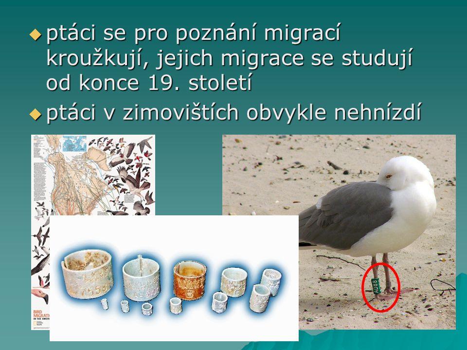 ptáci se pro poznání migrací kroužkují, jejich migrace se studují od konce 19. století
